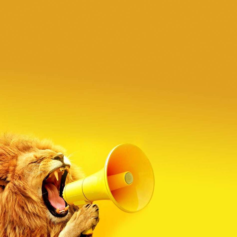 Erb signs lion